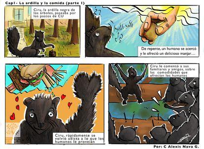 Imagen de un cómic sobre la plaga de ardillas elaborado por la Reserva Ecológica del Pedregal de San Ángel.