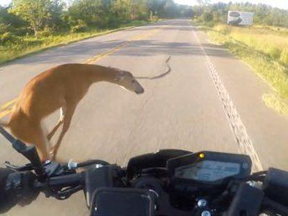 La cámara de su casco captó el momento el momento del accidente
