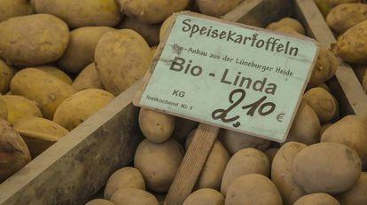 Patatas ecológicas en un puesto de un mercadillo en Berlín.
