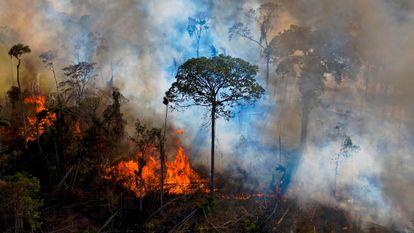 Un incendio ilegal en una reserva medioambiental de la Amazonia, al sur de Novo Progresso (Pará) a mediados de agosto.