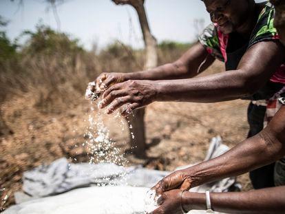 Unas mujeres comprueban el estado de la sal que extraen de la tierra, cerca de Quinhamel, región de Biombo, Guinea-Bisáu.