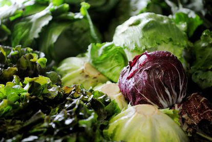 Los productos de cuarta gama han pasado de ser solo lechuga a incluir otras verduras, hortalizas y frutas.