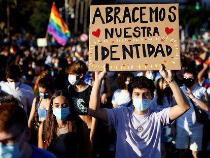 Un joven lleva una pancarta durante una manifestación del Orgullo LGTBI, en Valencia.