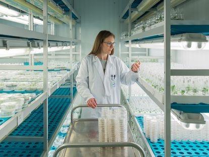 Laboratorio de biología celular de Bayer en Almería.