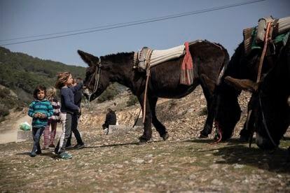 Unos niños acarician a un burro en Robledondo (Madrid).