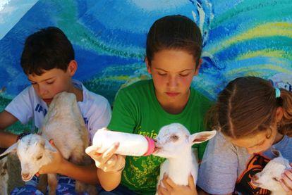 Niños en la granja Palomar.