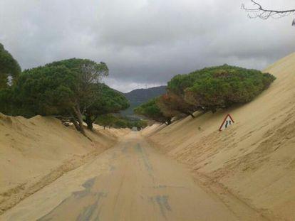 La carretera junto a la duna de Valdevaqueros, el pasado martes.