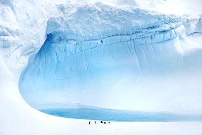 Hielo y pingüinos en la isla de Rey Jorge, en la Antártida.