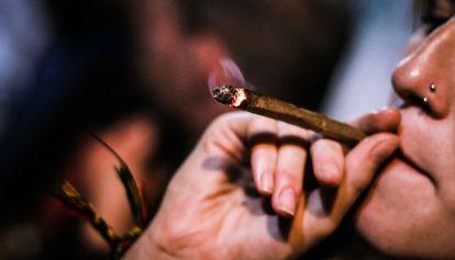El consumo recreativo de marihuana ha crecido más que el de cualquier otra droga ilegal durante las últimas dos décadas
