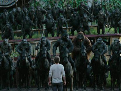 Imagen de 'La guerra del planeta de los simios'.