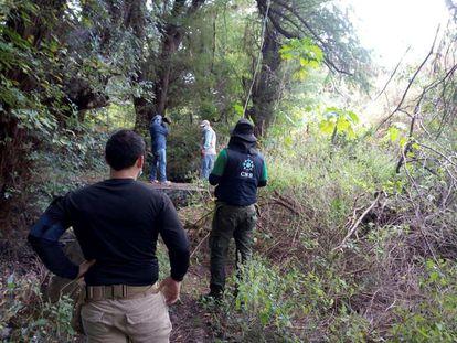 Un grupo de trabajo realiza labores de búsqueda este miércoles en Salvatierra (Guanajuato).