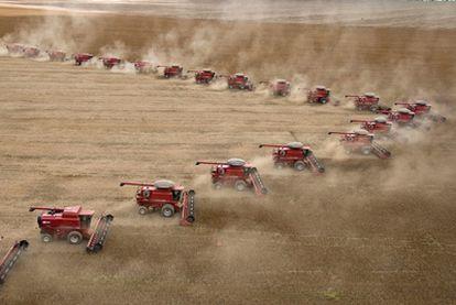 Una fila de cosechadoras recogen soja en Granja Fartura, en Campo Verde (Brasil).