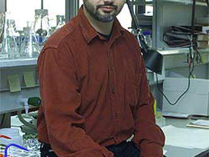Arcadi Navarro, investigador de la Universidad Pompeu Fabra.