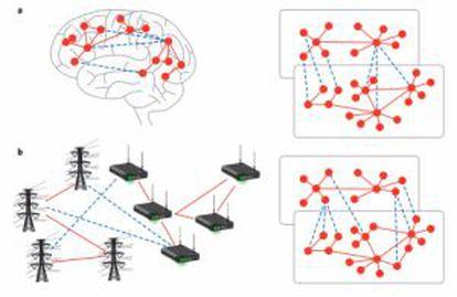 Esquema de las conexiones internas de una red (rojo) y las conexiones entre redes (azul) en el cerebro y en una red eléctrica.