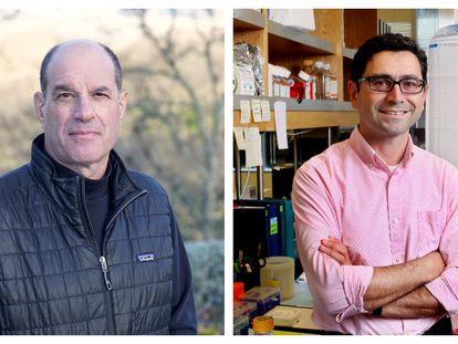 David Julius y Ardem Patapoutian ganadores del Premio Fronteras del Conocimiento en la categoría Biología y Biomedicina / Fundación BBVA
