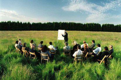 Medioambiente invertirá 3,1 millones de euros para impulsar el empleo verde.