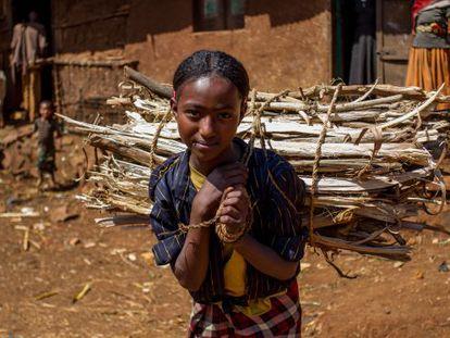 Una joven etíope carga un pesado fardo de leña sobre su espalda.