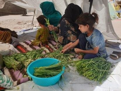 Parwana, cuyo marido fue asesinado en un ataque de los talibanes a su peluquería, limpia verduras con una de sus hijas y un vecino en el parque de Kabul donde viven.