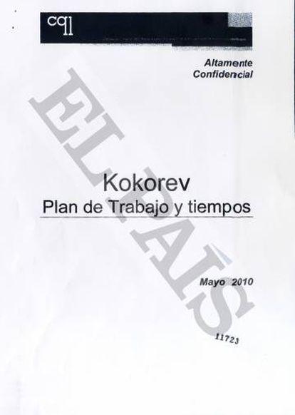 Contrato firmado entre Kokorev y la consultora.