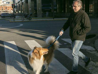 Fernández pasea con su perro antes de emitir su voto en las primarias del 11 de agosto.