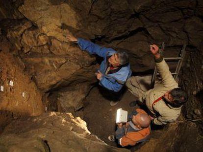 La secuencia genética de una adolescente que vivió hace más de 50.000 años en Siberia muestra que nació de una neandertal y un denisovano