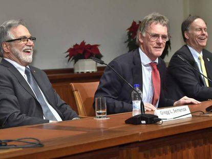 De izquierda a derecha, Leonard Semenza, William Kaelin y Peter Ratcliffe, ganadores del Nobel de Medicina de este año, durante una conferencia de prensa el pasado viernes en Estocolmo.