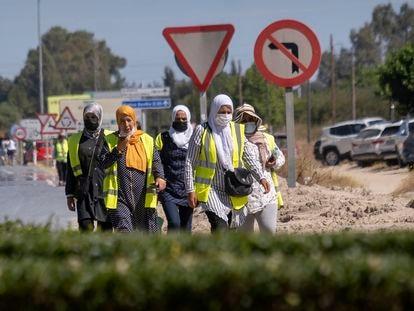 Un grupo de mujeres regresan de una jornada de trabajo en los invernaderos de Almonte (Huelva), el pasado mayo.