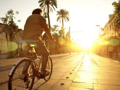 Cuatro signos de que podría faltarle vitamina D (por más que tome el sol)