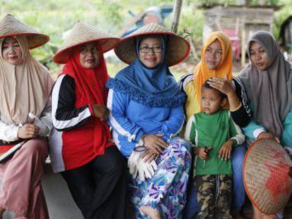 Un ambicioso proyecto público de restauración de turberas dañadas en Indonesia ha dotado de prosperidad económica y ambiental a las aldeas más perjudicadas por los incendios