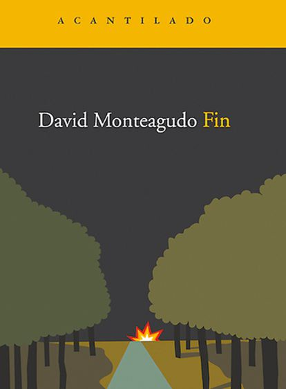 <b>Portada de la novela <i>Fin</i>, de David Monteagudo.</b>