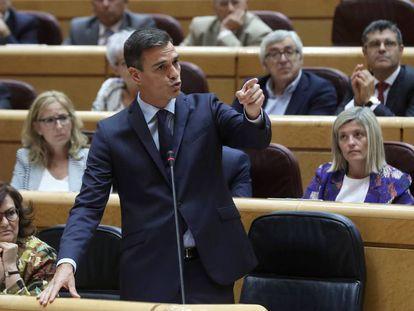 Pedro Sánchez, durante su compareciencia en el Senado. En vídeo, Pedro Sánchez da su apoyo a Carmen Montón a la salida de la cámara alta.