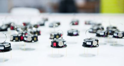 Robots kilobots, diseñados para agruparse, en Sheffield.