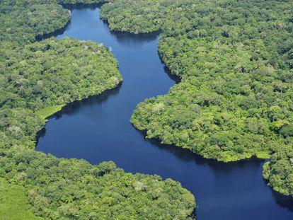 El río Amazonas atraviesa Brasil, Perú y Colombia a lo largo de sus casi 6.500 kilómetros.