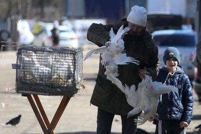 Una mujer vende aves en un mercado en la localidad rusa de Ivanovo.