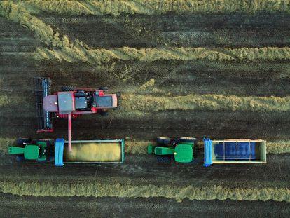 Imagen tomada desde un dron de una cosechadora en la localidad de Villaveta (Burgos).