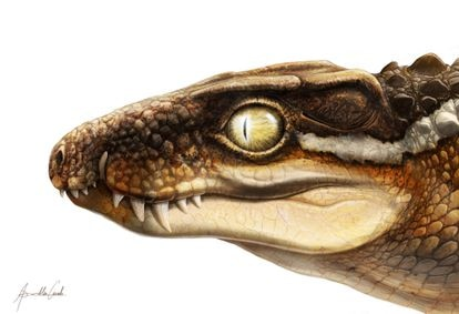 Recreación del aspecto en vida de la nueva especie de cocodrilo 'Ogresuchus furatus' /Aina i Agnès Amblás, ICP.