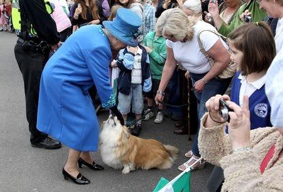 Isabel II acaricia a un corgi en Welshpool, Gales, en una visita realizada en abril de 2010.