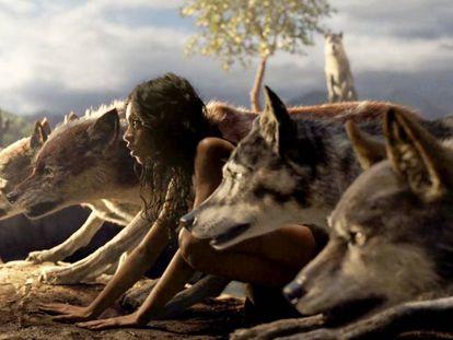 Mowgli, en un fotograma de la película ahora estrenada en Netflix. En vídeo: Tráiler del filme.