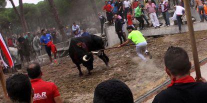Fran Alcalá, hunde su lanza en 'Rompesuelas', pero anulan su victoria por irregularidades.