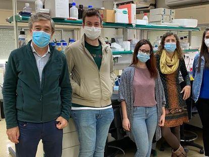 Grupo de investigación del Departamento de Biología Celular de la Universidad de Sevilla. De izquierda a derecha: Manuel Muñiz, Alejandro Cortés, Susana Sabido, Auxiliadora Aguilera, Sofía Rodriguez y Sergio López.