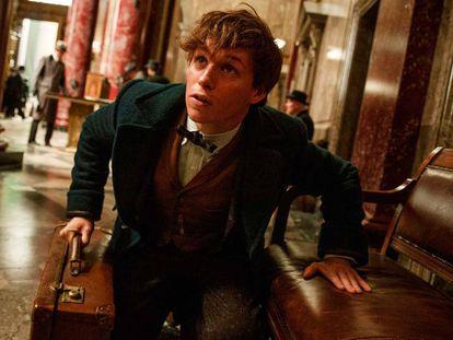 Tráiler del 'spin-off' de Harry Potter, 'Animales fantásticos y dónde encontrarlos'