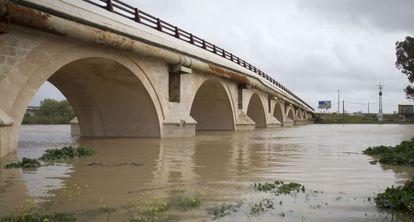 El río Guadalete, a su paso por la zona rural de Jerez.