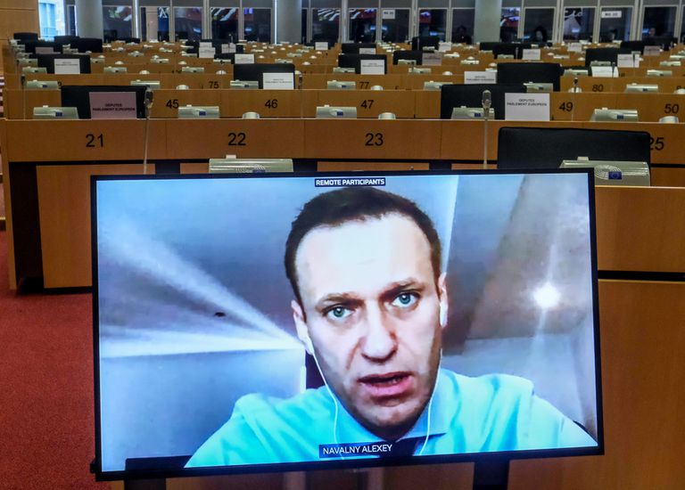 Participation by videoconference of Alexéi Navalni in a session of the Foreign Affairs committee of the European Parliament last month.