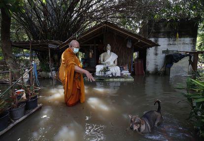 Un monje budista tailandés y un perro vadean a través del agua de una inundación por la tormenta tropical Dianmu en la comunidad de Koh Kret, Bangkok, Tailandia, el 5 de octubre de 2021.