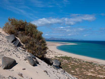 Vista de la playa de El Risco, en Costa Calma (Fuerteventura) vacía a finales de abril.