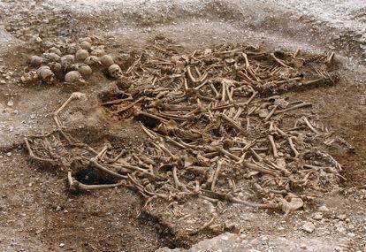 Enterramiento con unos 50 vikingos decapitados por los ingleses en el condado de Dorset.