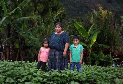 Irma Alesia, con sus hijos, en el huerto familiar de frijoles en Tamahú, Guatemala, en febrero.