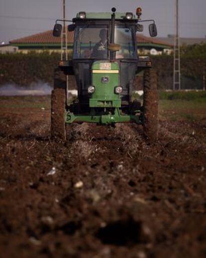 Un agricultor siembra trigo en una finca en la localidad sevillana de Brenes