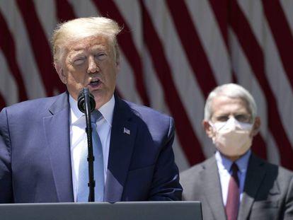 El presidente de Estados Unidos, Donald Trump, y el director del Instituto Nacional de Alergias y Enfermedades Infecciosas, Anthony Fauci, durante una comparecencia sobre la vacuna para el coronavirus