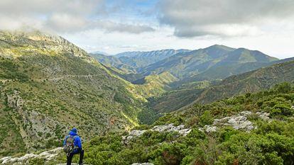 Paisaje del Parque Nacional de la Sierra de las Nieves.